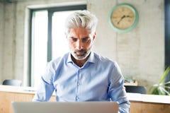 Ώριμος επιχειρηματίας με το lap-top στο δημιουργικό γραφείο Στοκ φωτογραφίες με δικαίωμα ελεύθερης χρήσης