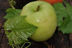 Ώριμος πράσινο μήλου Στοκ Εικόνα