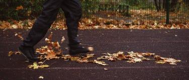 Ώριμο αρσενικό τρέξιμο αθλητών υπαίθριο στοκ εικόνα με δικαίωμα ελεύθερης χρήσης