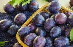 Ώριμο δαμάσκηνο φρούτων Στοκ Εικόνες