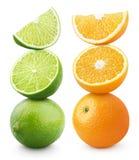 Ώριμο εσπεριδοειδές πορτοκαλιών και ασβέστη που απομονώνεται στο λευκό Στοκ εικόνες με δικαίωμα ελεύθερης χρήσης