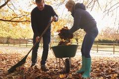 Ώριμο ζεύγος που μαζεύει με τη τσουγκράνα τα φύλλα φθινοπώρου στον κήπο στοκ εικόνες