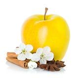 Ώριμο κίτρινο μήλο με τα ραβδιά κανέλας, το αστέρι γλυκάνισου και τα λουλούδια μήλων Στοκ εικόνες με δικαίωμα ελεύθερης χρήσης