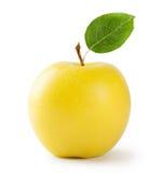 Ώριμο κίτρινο μήλο με το φύλλο Στοκ Εικόνα