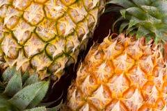 Ώριμο κοχύλι ανανά σύστασης υποβάθρου τρόφιμα φρούτων ανανά που απομονώνεται στα υγιή Στοκ Εικόνες