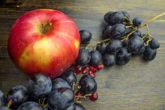 Ώριμο κόκκινο μήλο φρούτων και μαύρα σταφύλια στοκ εικόνες