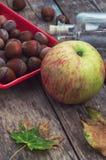 Ώριμο μήλο και κόκκινο πιατάκι με τα φουντούκια Στοκ εικόνες με δικαίωμα ελεύθερης χρήσης