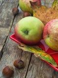 Ώριμο μήλο και κόκκινο πιατάκι με τα φουντούκια Στοκ φωτογραφία με δικαίωμα ελεύθερης χρήσης