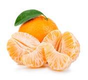 Ώριμο μανταρίνι με την κινηματογράφηση σε πρώτο πλάνο φύλλων σε ένα άσπρο υπόβαθρο Tangerine πορτοκάλι με το φύλλο σε ένα άσπρο υ Στοκ φωτογραφία με δικαίωμα ελεύθερης χρήσης