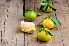 Ώριμο μανταρίνι με Tangerine φύλλων τα εσπεριδοειδή μανταρινιών στο ξύλινο επιτραπέζιου υποβάθρου διάστημα αντιγράφων εσπεριδοειδ Στοκ Εικόνες