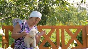 Ώριμο παιχνίδι γυναικών με τη συνεδρίαση σκυλιών της υπαίθρια κοντά στο σπίτι του φιλμ μικρού μήκους