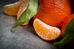 Ώριμο πορτοκαλί tangerine γαρίφαλο Στοκ Εικόνες