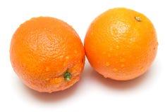 ώριμο σύνολο πορτοκαλιών Στοκ Εικόνα