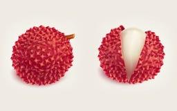 Ώριμο φρέσκο ρεαλιστικό διάνυσμα φρούτων λίτσι Στοκ Εικόνες