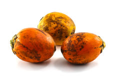 Ώριμο areca καρύδια ή betel - καρύδια στοκ εικόνα