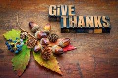 Δώστε τις ευχαριστίες - έννοια ημέρας των ευχαριστιών Στοκ Εικόνες