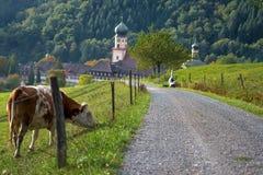 Аббатство в черном лесе, Munstertal Стоковые Изображения