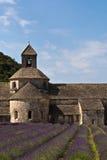 Аббатство и лаванда Senanque field, Провансаль, Франция стоковое изображение rf