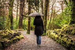 Аббатство Connemara & Cong - Kylemore - Ирландия Стоковое Фото