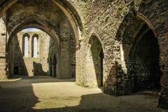 аббатство dunbrody графство Wexford Ирландия стоковое изображение