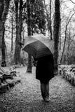 Аббатство Kylemore - Connemara & Cong - Ирландия Стоковые Фото