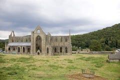 аббатство tintern стоковое фото