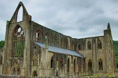 аббатство tintern Стоковая Фотография