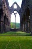 аббатство tintern Стоковое Изображение RF