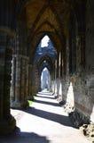 аббатство whitby Стоковые Изображения