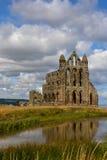 аббатство whitby Стоковая Фотография