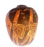 аборигенная гайка boab Стоковое Изображение RF