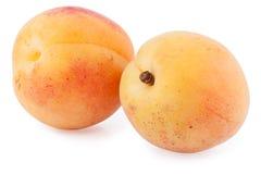 2 абрикоса изолировали вырез Стоковые Изображения