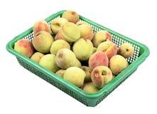 абрикосы зрелые Стоковые Фото