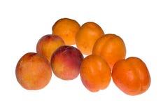 Абрикосы и персики Стоковая Фотография