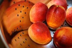 абрикосы свежие Стоковая Фотография