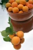 абрикосы Стоковая Фотография