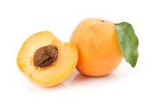 абрикосы Стоковые Изображения RF