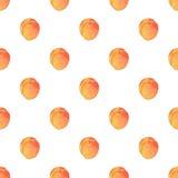 Абрикосы fruits pattern seamless рука нарисованная предпосылкой также вектор иллюстрации притяжки corel Иллюстрация штока