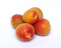 абрикос Стоковые Изображения
