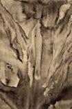 Абстрактная акварель на бумажной текстуре как предпосылка В тонне Sepia Стоковые Изображения