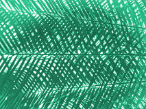Абстрактная ладонь выходит картина Стоковые Фотографии RF