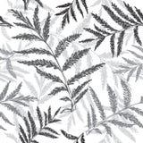 Абстрактная безшовная картина травянистого, рука нарисованное backgroun Стоковое Изображение