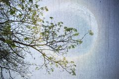 Абстрактная бумага искусства изображения и полнолуние Стоковые Фото