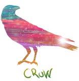Абстрактная ворона Стоковые Изображения
