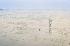 абстрактная вода предпосылки Стоковые Изображения RF