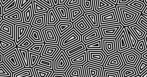 абстрактная геометрическая предпосылка 4K с каналом альфы Тонкие линии двигают бесконечно иллюстрация штока