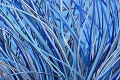 Абстрактная гловальная компьютерная сеть Стоковая Фотография