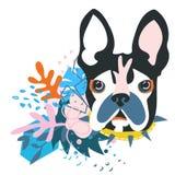 Абстрактная голова собаки коллажа papercut Стоковые Изображения