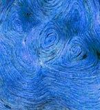 абстрактная голубая текстура Стоковые Изображения