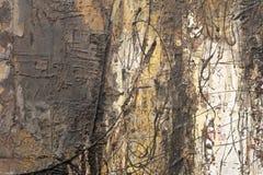 Абстрактная декоративная картина картины лака, самана rgb Стоковое Изображение
